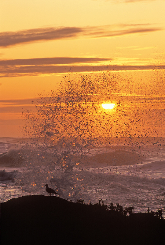 Sunset and waves at Cape Perpetua, Oregon.