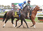 It's Tricky, ridden by Eddie Castro, in the Beldame Invitational Stakes (GI) at Belmont Park in Elmont, New York on September 29, 2012.  (Bob Mayberger/Eclipse Sportswire)