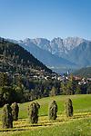 Austria, Tyrol, Pitztal Valley, Arzl in Pitztal Valley: haymaking, at background Lechtal Alps   Oesterreich, Tirol, Pitztal, Arzl im Pitztal: Heuernte, im Hintergrund die Lechtaler Alpen