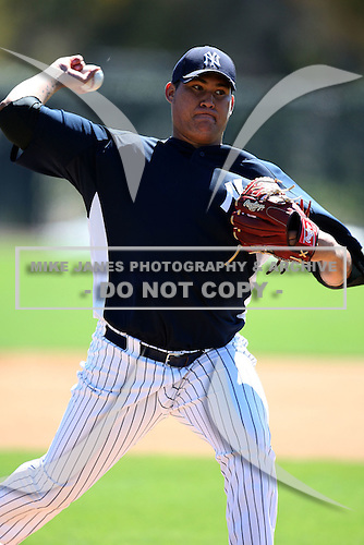 February 25, 2010:  Pitcher Romulo Sanchez of the New York Yankees signs autographs after practice at Legends Field in Tampa, FL.  Photo By Mike Janes/Four Seam Images