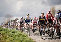 Yves LAMPAERT (BEL/Deceuninck-Quick Step)<br /> <br /> 74th Dwars door Vlaanderen 2019 (1.UWT)<br /> One day race from Roeselare to Waregem (BEL/183km)<br /> <br /> ©kramon