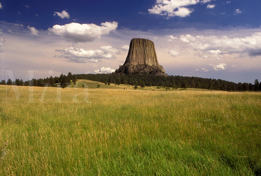 Devils Tower National Monument, WY, Wyoming, Scenic view of Devils Tower at Devils Tower Nat'l Monument in Wyoming.