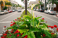 Rodeo Drive in Beverly Hills, Los Angeles, California