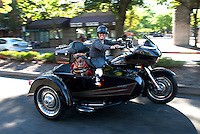 Pit bull mix, Lucy, rides in a sidecar next to her mom, Brande Schweitzer, who drives a Harley-Davidson, in Seattle, Washington.