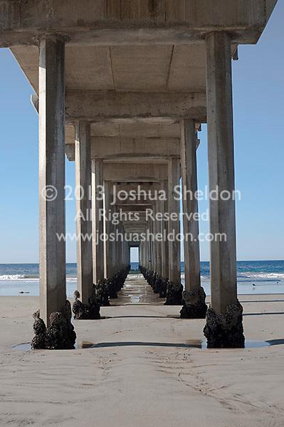 Underneath Scripp's pier, La Jolla, California