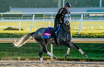 January 20, 2021: Knicks Go exercises as horses prepare for the 2021 Pegasus World Cup Invitational at Gulfstream Park in Hallandale Beach, Florida. Scott Serio/Eclipse Sportswire/CSM