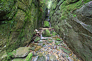 Mt. Kinsman Flume (Howland's Flume) along Flume Brook during the spring months. This natural gorge is located off the Mt. Kinsman Trail in Easton, New Hampshire USA.