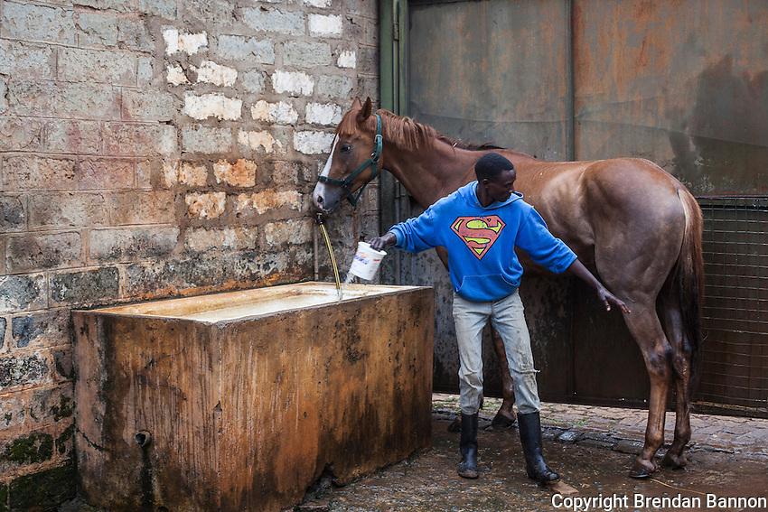 Syce Stephen Muritu washes Redfella after a morning of exercise at Ngong Racecourse, Nairobi, Kenya. March 15, 2013. Photo: Brendan Bannon