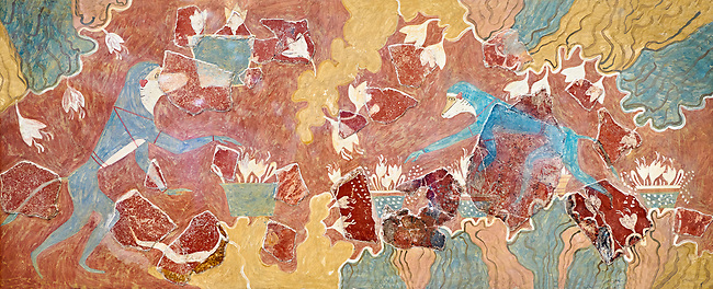 The Minoan 'Saffron Gatherer' wall art fresco, from 'House of Frescoes' Knossos Palace. 1700-1450 BC. Heraklion Archaeological Museum.<br /> <br /> The 'Saffron Gatherers' fresco depicts a blue monket gatering saffron crocuses and placing them in a basket. The saffron is thought to have been a gift to the 'Great Goddess'. One of the earliest frescoes from Knossos.