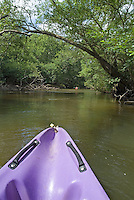 Purple canoe on the Eyre river, Aquitaine, France.