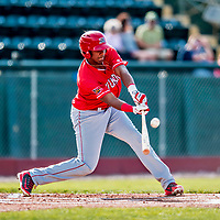 29 July 2018: Batavia Muckdogs outfielder Jerar Encarnacion in action against the Vermont Lake Monsters at Centennial Field in Burlington, Vermont. The Lake Monsters defeated the Muckdogs 4-1 in NY Penn League action. Mandatory Credit: Ed Wolfstein Photo *** RAW (NEF) Image File Available ***
