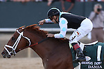 April 12, 2014: #1 Danza with jockey Joe Bravo aboard celebrating after crossing the finish line during the Arkansas Derby at Oaklawn Park in Hot Springs, AR. Justin Manning/ESW/CSM
