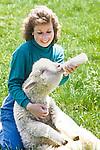 Farmer feeding a large lamb