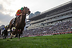 SHA TIN,HONG KONG-DECEMBER 11: Maurice #2,ridden by Ryan Moore,wins the Hong Kong Cup at Sha Tin Racecourse on December 11,2016 in Sha Tin,New Territories,Hong Kong (Photo by Kaz Ishida/Eclipse Sportswire/Getty Images)