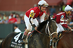 April 12, 2014: #4 Ride On Curlin with jockey Jon Court aboard after the running of the Arkansas Derby at Oaklawn Park in Hot Springs, AR. Justin Manning/ESW/CSM