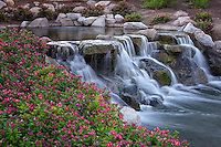 Waterfalls in Garden. Palm Desert, California