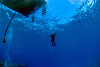 Diver descending from a dive boat. Lanai, Hawaii