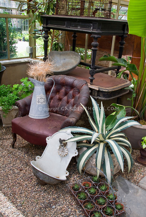 Succulent agave in pot container, old antique furniture, flea market finds, sink, tables, plants, watering can container, Banana plant tree in pot, old bird cage, and rustic garden ornaments