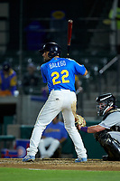 Cam Balego (22) of the Myrtle Beach Pelicans at bat against the Winston-Salem Dash at TicketReturn.com Field on May 16, 2019 in Myrtle Beach, South Carolina. The Dash defeated the Pelicans 6-0. (Brian Westerholt/Four Seam Images)