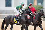 February 17, 2020: Chase Tracker (6) with jockey John Velazquez aboard during the Southwest Stakes at Oaklawn Racing Casino Resort in Hot Springs, Arkansas on Feburary 17, 2020. Ted McClenning//Eclipse Sportswire/CSM
