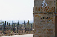 vineyard Hacienda Unamuno, Durius natural Reserve, DO Arribes del Duero spain castile and leon