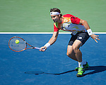 David Ferrer (ESP) defeats Tommy Robredo (ESP) 6-4, 3-6, 6-3 at the Western & Southern Open in Mason, OH on August 15, 2014.