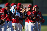 Miguel Aparicio (5) of the Hickory Crawdads high fives teammates following the win over the Greensboro Grasshoppers at L.P. Frans Stadium on May 26, 2019 in Hickory, North Carolina. The Crawdads defeated the Grasshoppers 10-8. (Brian Westerholt/Four Seam Images)