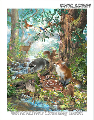 Liz,REALISTIC ANIMALS, REALISTISCHE TIERE, ANIMALES REALISTICOS, LizDillon, paintings+++++,USHCLD0291,#A#, EVERYDAY,wildlife,fox,raccons,squirrels,