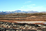 Small pond in the Norwegian mountains, Rondane National park in the background
