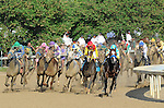 I'll Have Another (purple), ridden by Mario Gutierrez and trained by Doug O'Neill, during the 138th Kentucky Derby at Churchill Downs in Louisville, Kentucky on May 5, 2012