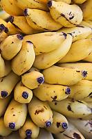 France/DOM/Martinique/ Saint-Pierre: le marché- détail étal- bananes