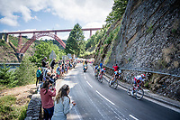early breakaway group<br /> <br /> Stage 10: Saint-Flour to Albi(217km)<br /> 106th Tour de France 2019 (2.UWT)<br /> <br /> ©kramon