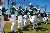 Farmingdale State Rams Nick LaSala (20) high fives teammates Brandon Ernest (6) and Nicholas Soriano (11) after practice before the first game of a doubleheader against the FDU-Florham Devils on March 15, 2017 at Lake Myrtle Park in Auburndale, Florida.  Farmingdale defeated FDU-Florham 6-3.  (Mike Janes/Four Seam Images)