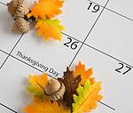 USA, Illinois, Metamora, Acorns on calendar