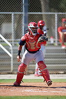 GCL Nationals catcher Onix Vega (8) during a game against the GCL Cardinals on August 5, 2018 at Roger Dean Chevrolet Stadium in Jupiter, Florida.  GCL Cardinals defeated GCL Nationals 17-7.  (Mike Janes/Four Seam Images)