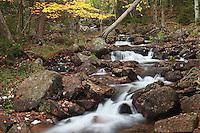 Autumn Jordan Stream #A87