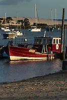 France, Gironde (33), Bassin d'Arcachon, Le Cap-Ferret, le port ostréicole du village  des pêcheurs et  la Dune du Pyla// France, Gironde, Bassin d'Arcachon, Le Cap Ferret, the oyster port of the fishing village and the Dune du Pyla