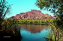 Salt River North East of Measa, AZ off of N. Bush Hwy which leads off to E. Butcher Jones Beach Rd Butcher Jones Recreation Site and Saguaro Lake