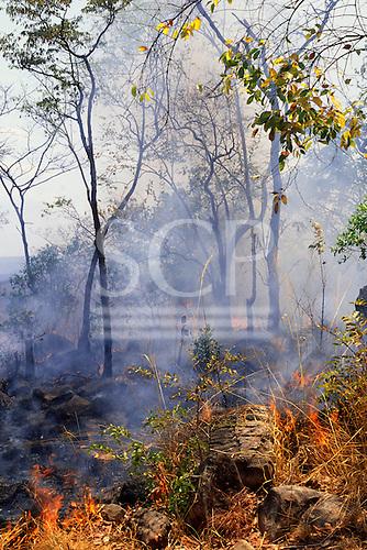 Kasanga, Tanzania. Burning vegetation in slash-and-burn agriculture.