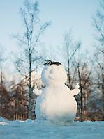 A snowman in Niseko, Hokkaid?, Japan