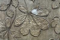 Bas relief en ciment sur un immeuble le long de l'avenue Roger Dodin