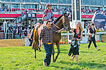 Javier Castellano and connections celebrate winning the 2013 GIII Pimlico Special at Pimlico Racecourse in Baltimore, Maryland.
