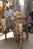 Man on horse cart delivering crates in New Delhi, India