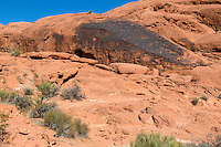 Valley of Fire, Nevada.  Indian Petroglyphs on Desert Varnish, Mouse's Tank Trail.