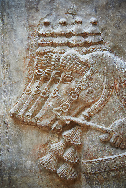 Stone relief sculptured panel of horses. From Dur Sharrukin the palace of Assyrian king Sargon II at Khorsabad, 713-706 BC.  Louvre Museum Room 4 , Paris
