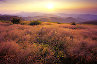 Sunrise on Tennant Mountain, Pisgah National Forest