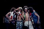 VAN HALEN Eddie Van Halen, Alex Van Halen, Michael Anthony, David Lee Roth