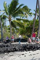 Hawaiian monk seal, Neomonachus schauinslandi( Critically Endangered ), 2.5 year old male relaxes on the beach while visitors snap photos, Pu'uhonua o Honaunau ( City of Refuge ) National Historical Park, Kona, Big Island, Hawaii, USA, Pacific Ocean