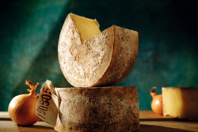 Truckle of English cheddar cheese food photos