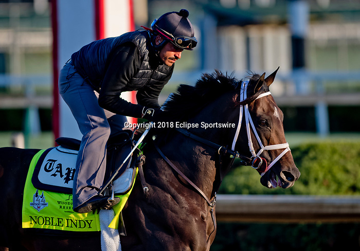 LOUISVILLE, KY - APRIL 30: Noble Indy, trained by Todd Pletcher, exercises in preparation for the Kentucky Derby at Churchill Downs on April 30, 2018 in Louisville, Kentucky. (Photo by Scott Serio/Eclipse Sportswire/Getty Images)